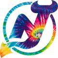 New Jersey Devils rainbow spiral tie-dye logo decal sticker