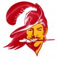 Tampa Bay Buccaneers Crystal Logo decal sticker