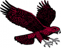 Maryland-Eastern Shore Hawks 2007-Pres Secondary Logo iron on sticker