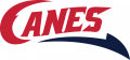 Lethbridge Hurricanes 2013 14-Pres Secondary Logo decal sticker