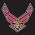 Airforce Ottawa Senators Logo decal sticker