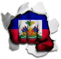Fist Haiti Flag Logo decal sticker