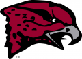 Maryland-Eastern Shore Hawks 2007-Pres Primary Logo iron on sticker