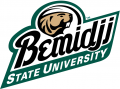 Bemidji State Beavers 2004-Pres Alternate Logo decal sticker