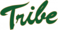 William and Mary Tribe 2009-2015 Primary Logo decal sticker