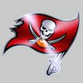 Tampa Bay Buccaneers Stainless steel logo iron on sticker
