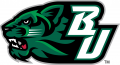 Binghamton Bearcats 2001-Pres Secondary Logo 02 iron on sticker