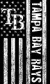 Tampa Bay Rays Black And White American Flag logo iron on sticker