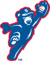 South Bend Cubs 2015-Pres Alternate Logo decal sticker