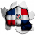 Fist Dominican Republic Flag Logo decal sticker