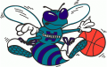 Charlotte Hornets 1988 89-2001 02 Alternate Logo iron on sticker
