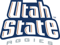 Utah State Aggies 1996-2011 Wordmark Logo iron on sticker