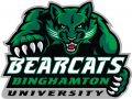 Binghamton Bearcats 2001-Pres Alternate Logo 02 iron on sticker