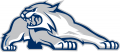 New Hampshire Wildcats 2000-Pres Alternate Logo 03 decal sticker