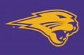 Northern Iowa Panthers 2002-2014 Partial Logo 02 decal sticker