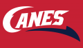 Lethbridge Hurricanes 2013 14-Pres Secondary Logo 2 decal sticker