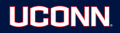 UConn Huskies 2013-Pres Wordmark Logo 05 iron on sticker