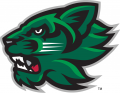 Binghamton Bearcats 2001-Pres Secondary Logo iron on sticker