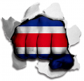 Fist Costa Rica Flag Logo decal sticker