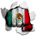 Fist Mexico Flag Logo decal sticker