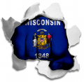 Fist Wisconsin State Flag Logo decal sticker