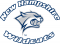 New Hampshire Wildcats 2000-Pres Alternate Logo 02 decal sticker