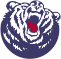 Belmont Bruins 2003-Pres Secondary Logo iron on sticker