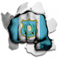 Fist Guatemala Flag Logo decal sticker